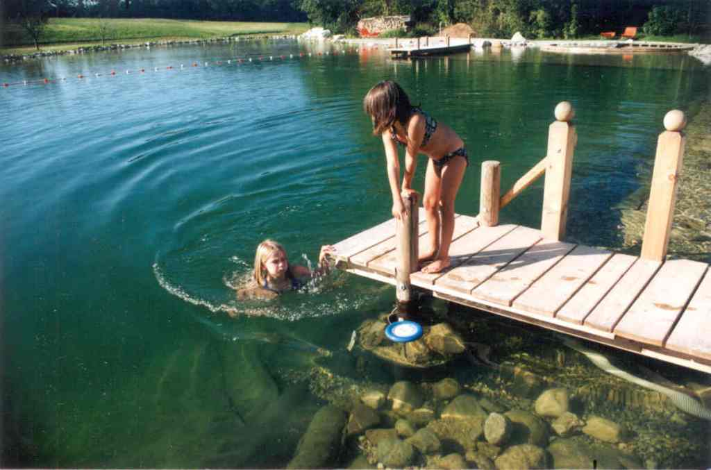 Пруды для купания на даче своими руками