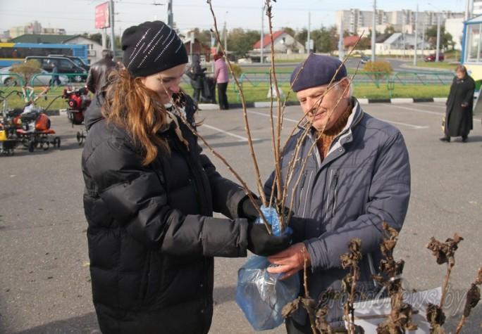На Гродненщине в субботу пройдет «Бярозавы фэст»: будут сок, садовый инвентарь, семена и привлекательные цены!